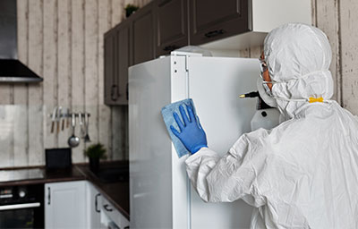 Sanitizing and Deodorizing Your Home